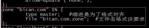 主DNS区域配置